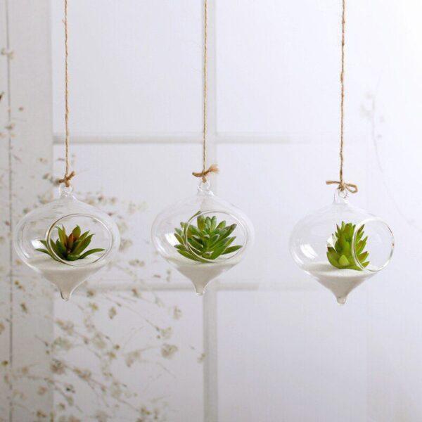 Hanging Glass Terrarium for Succulents