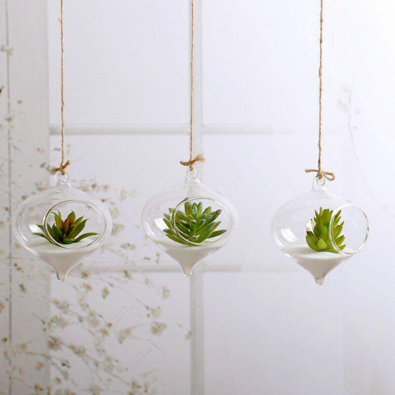 Hanging Glass Terrarium for Succulents 2